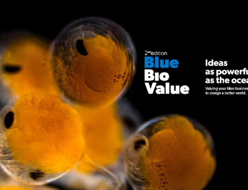 Oct 08th – Nov 06th, 2019: LAGOSTA at BLUE BIO VALUE – LISBON